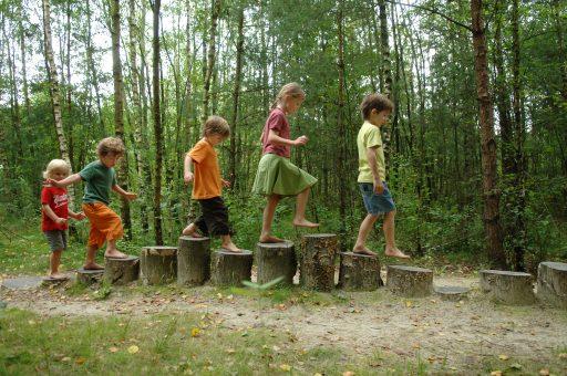 Week van het bos: dit zijn de 5 leukste speelbossen in Vlaanderen