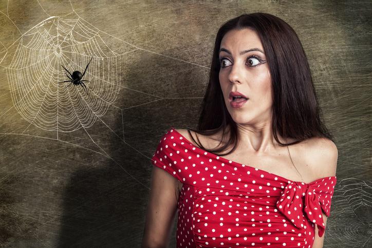 6 manieren om spinnen buiten te houden