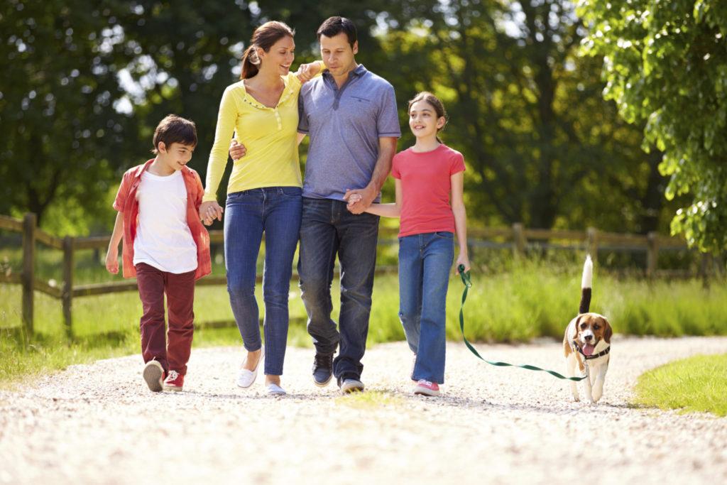 7 redenen om dagelijks te wandelen