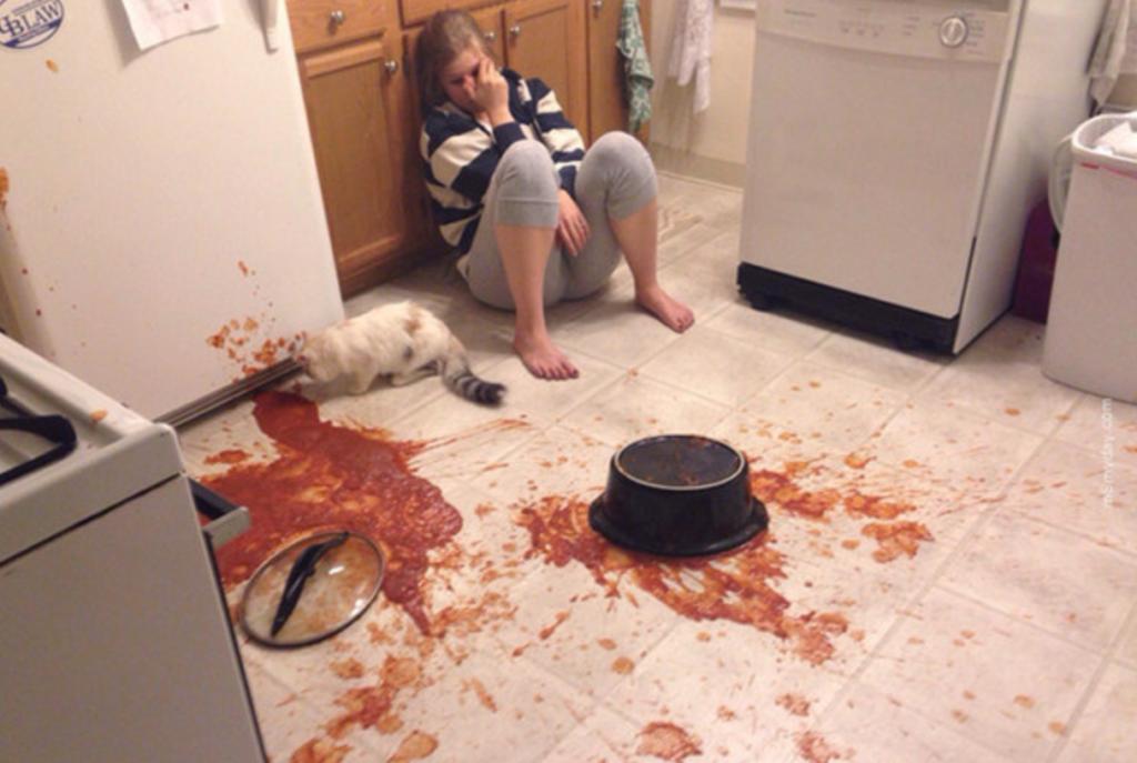 9 Hilarische situaties die je zeker zal herkennen als je een kat in huis hebt!