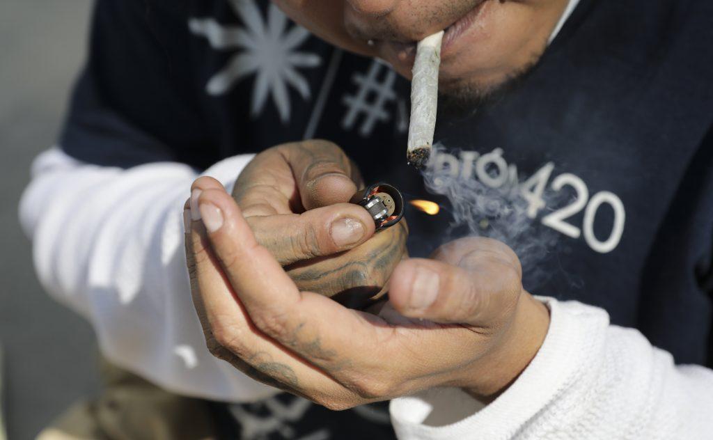 Cannabis is de voorbije vijftig jaar gevoelig sterker geworden