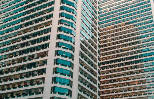 Les vitres du futur pourraient être construites en bois transparent