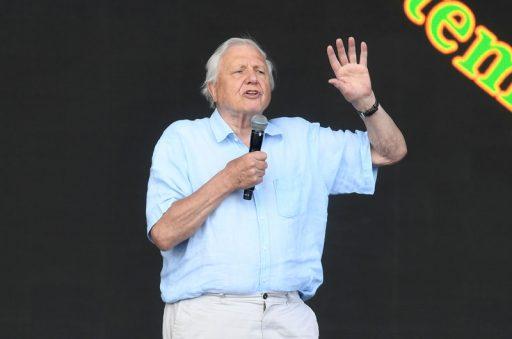 David Attenborough (94) sensatie op Instagram: in halve dag naar 1,5 miljoen volgers