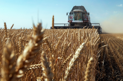 Rusland voert dominantie op wereldwijde graanmarkt nog verder op