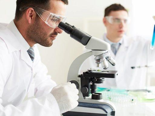 La pharma liégeoise Hyloris va lever 62 millions grâce à son introduction en Bourse