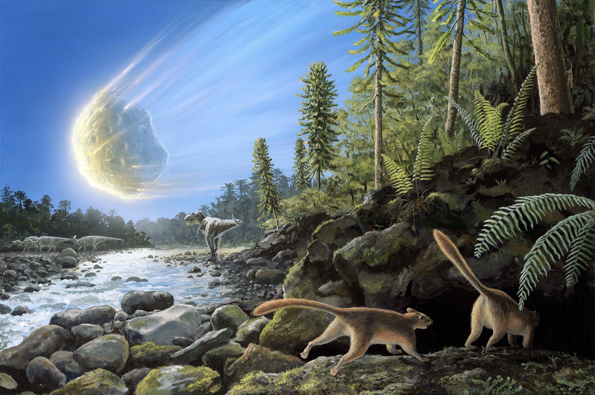 Was het een komeet of een asteroïde die de dino's uitroeide? En waarom is dat belangrijk? - Business AM - NL