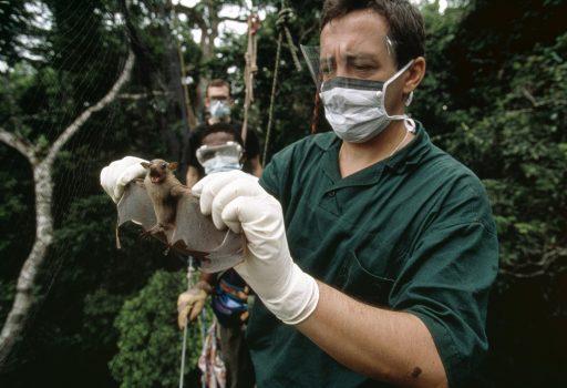 Aanwijzingen over afkomst Covid-19 teruggevonden in diepvries van Cambodjaans lab