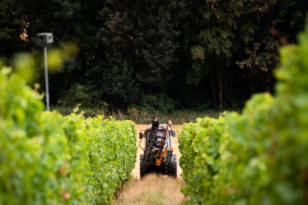 Het Domaine viticole du Chenoy in Émines, ten noorden van Namen.