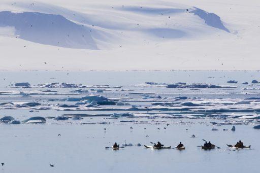Le dernier plateau de glace entièrement intact au Canada s'est effondré en l'espace de deux jours