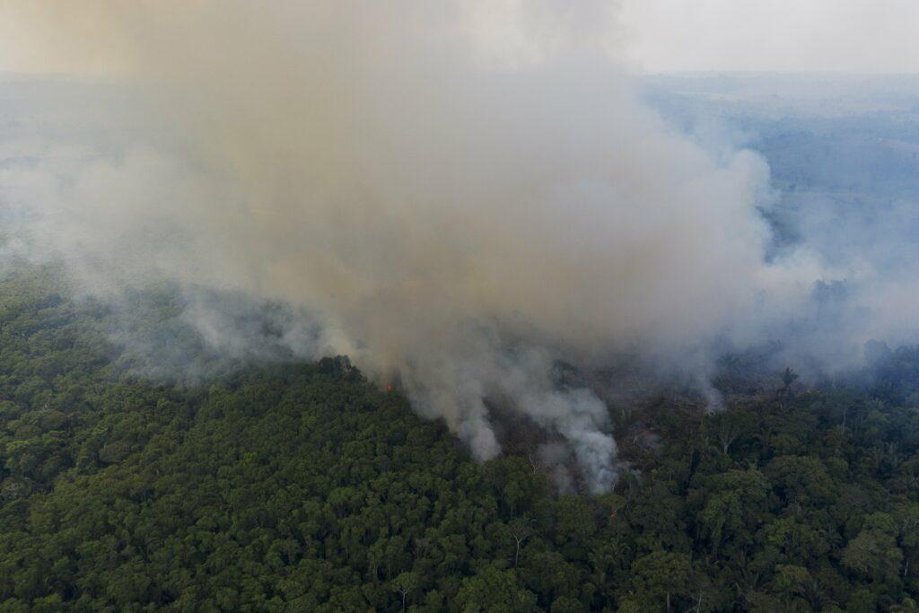 Brand regenwoud Amazone Brazilië