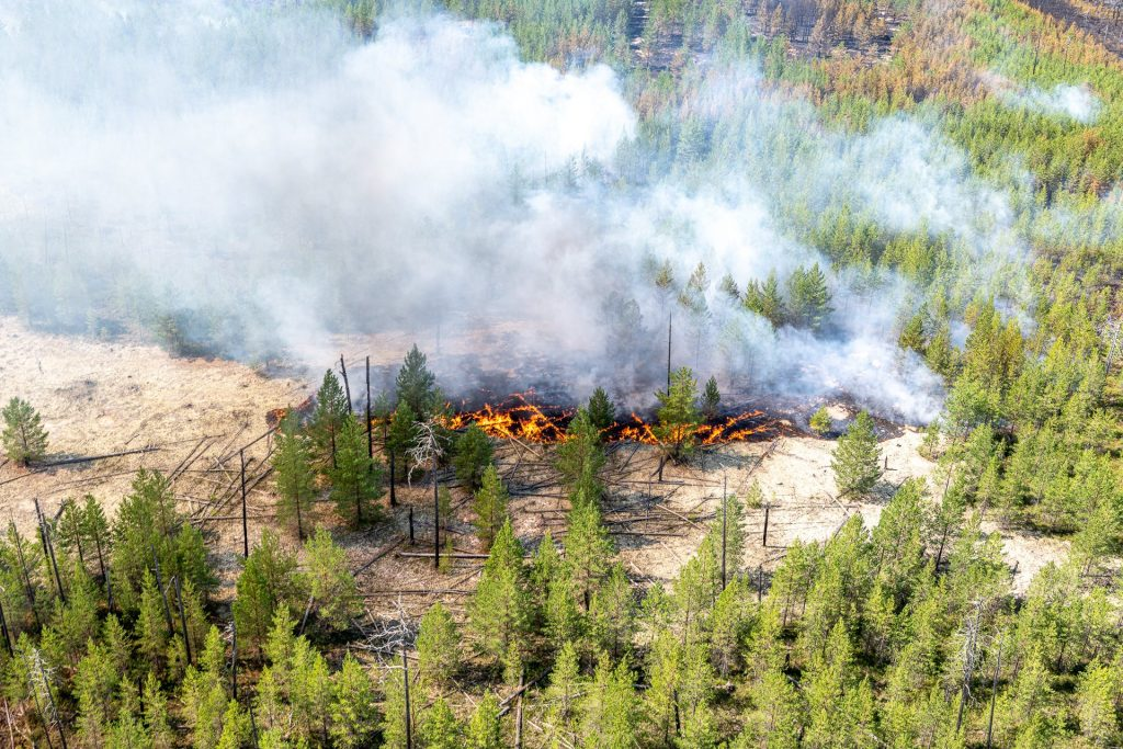 Wildfires in Khanty-Mansi, Rusland