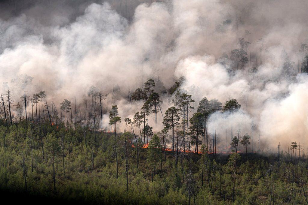 Wildfires in Khanty-Mansi, Rusland