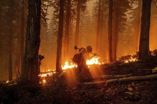 Robert Reich: 'De westkust van de VS staat in brand en het kan Trump niet schelen'