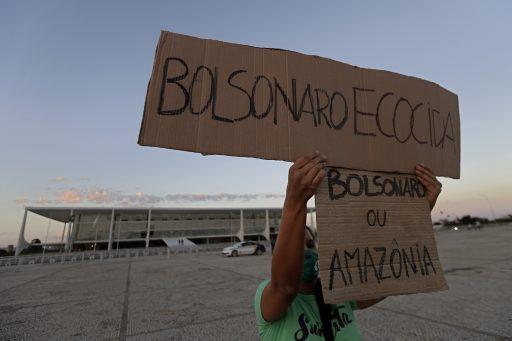 Sinds Bolsonaro verdwijnt het Amazonewoud aan een moordend tempo