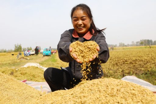 Le programme chinois de contrôle de la météo: outil agricole ou véritable arme de guerre?