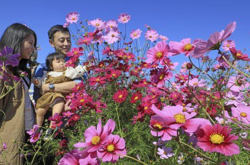 Japanse demografische crisis wordt door coronapandemie nog verergerd