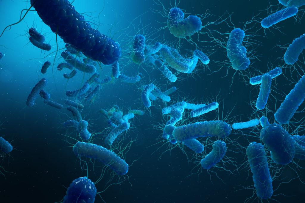 Besmetting met legionella: wat is het en is er reden tot bezorgdheid?