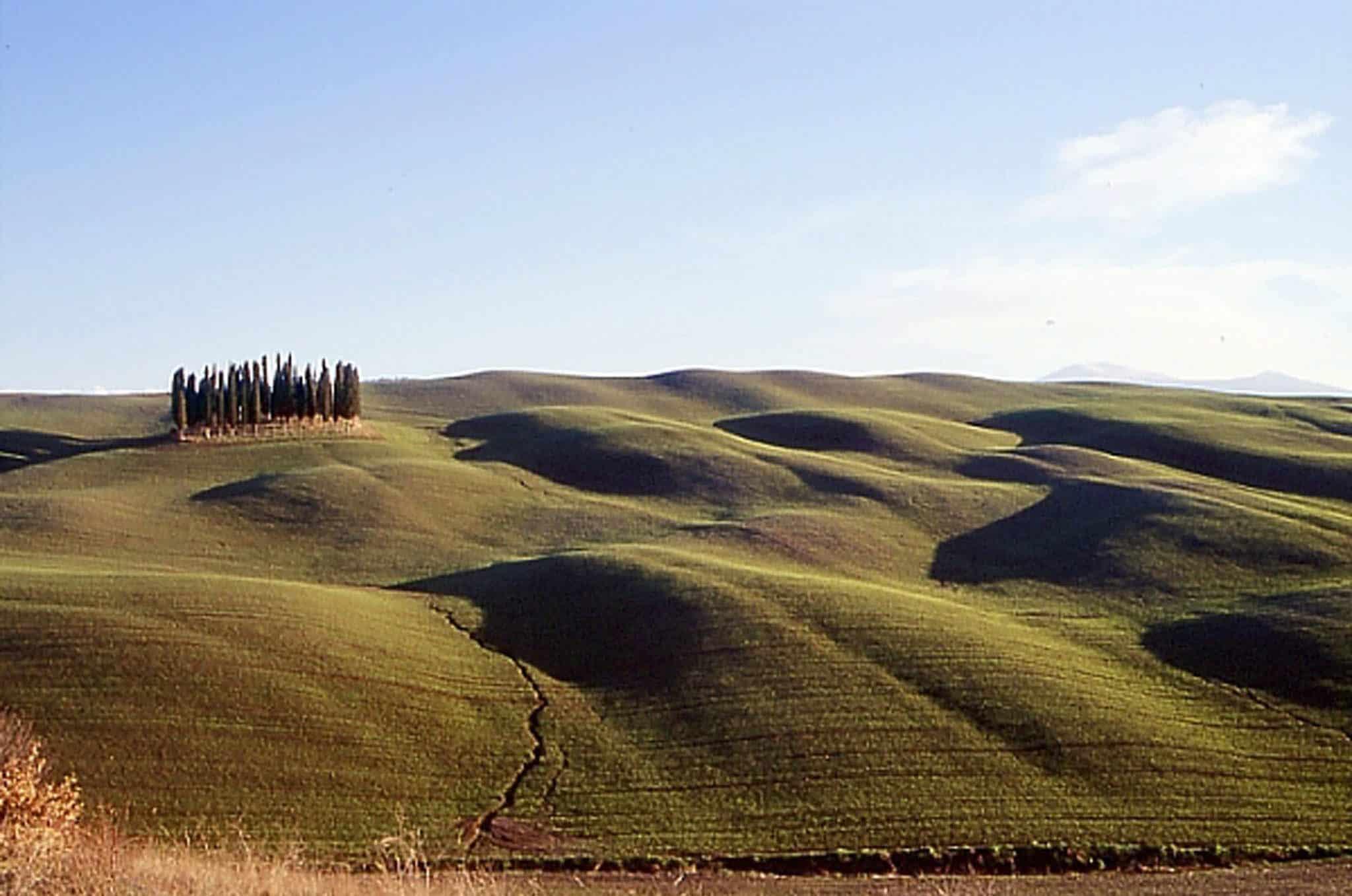 Une vallée vallonnée à San Quirico d