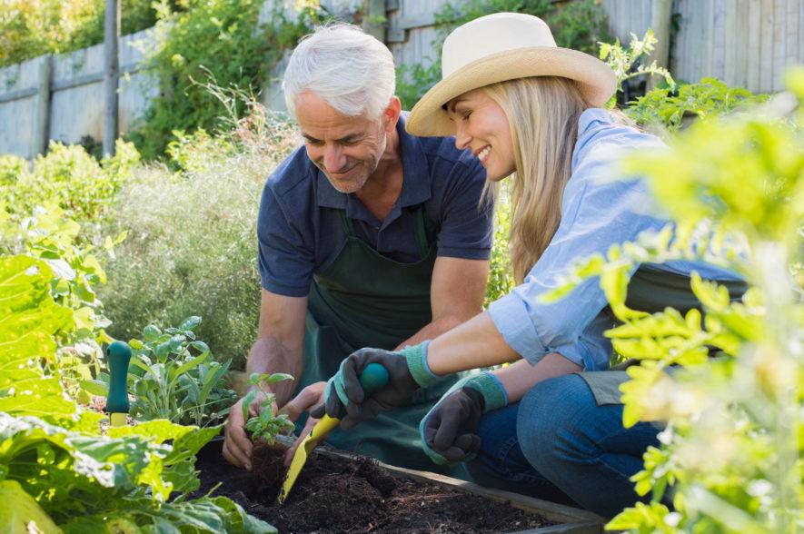 5 tips om goed te tuinieren
