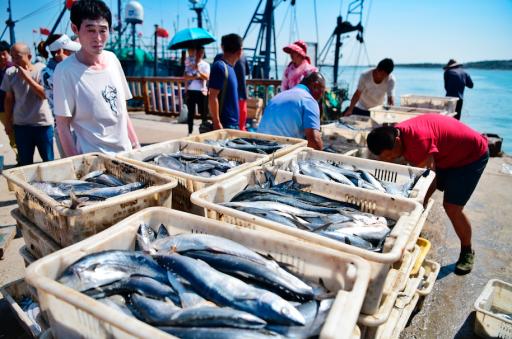 Akkoord tussen veertien landen moet 30 procent van de oceanen beschermen