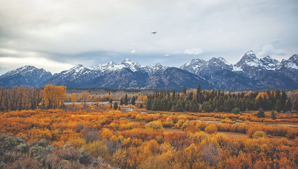 Jackson Hole Airport (JAC) (Wyoming, VS)