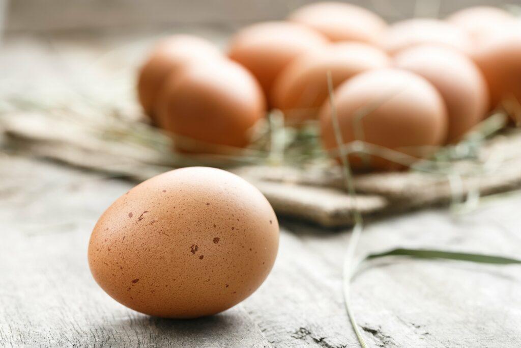 De relatie tussen eieren en nieren uitgelicht