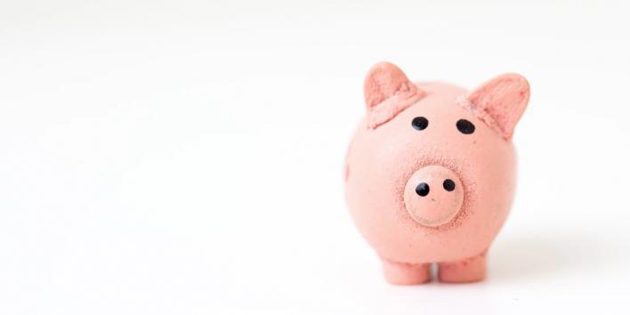pink pig money saving