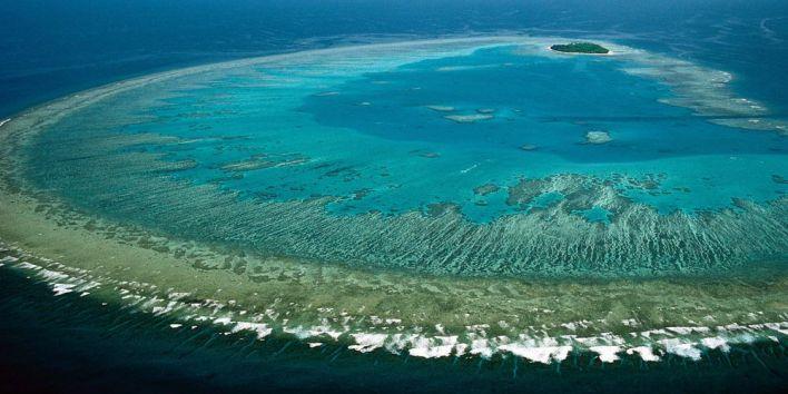 1great barrier reef australia snorkeling island ocean