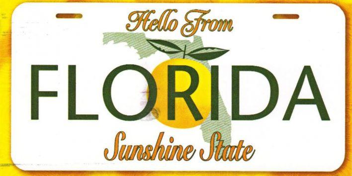 florida license plate sunshine state