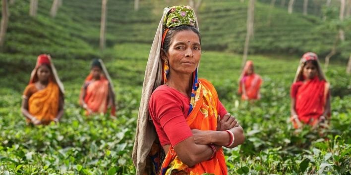 india woman agriculture colors