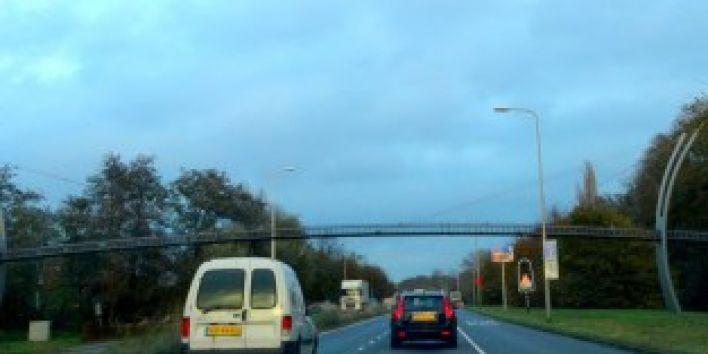 Squirrel-bridge-The-Hague