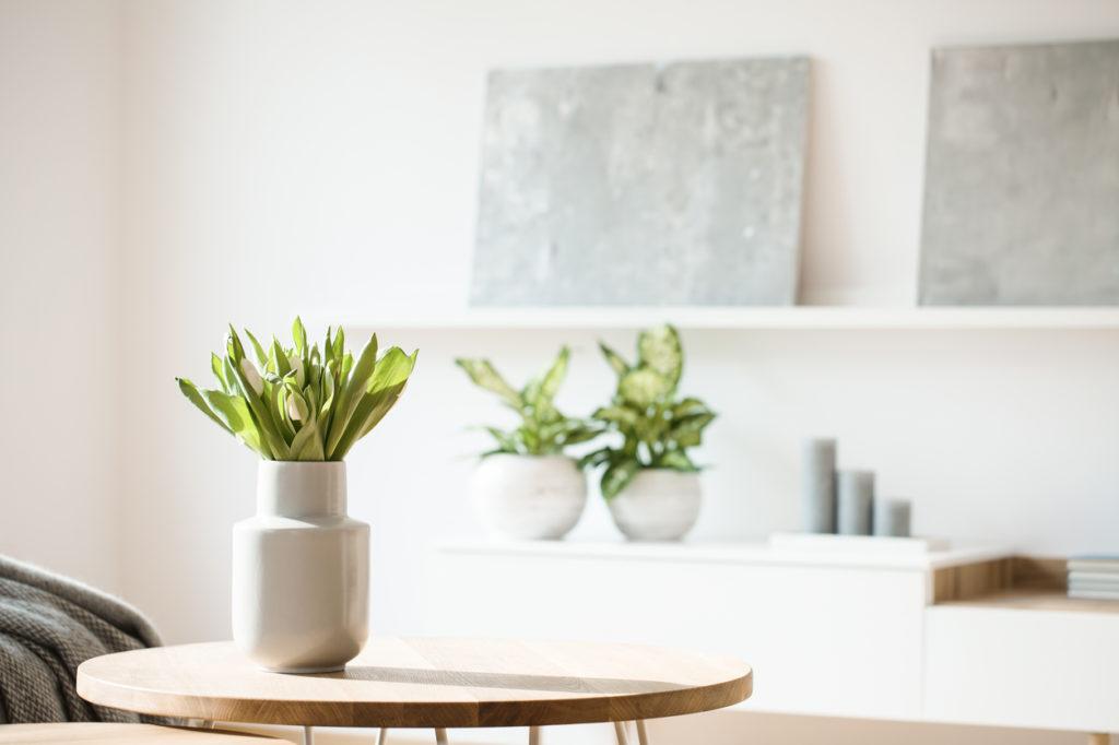 Een gezond lichaam in een gezonde woning: 7 tips om je woning gezonder te maken