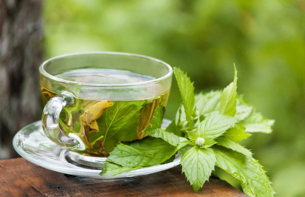 De gezonde effecten van groene thee