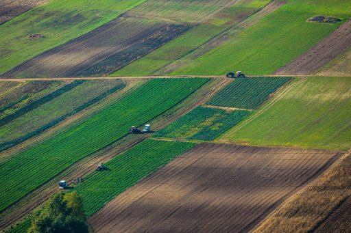 Landbouwplan van EU legt bom onder Green Deal en toekomst van kleine landbouwbedrijven