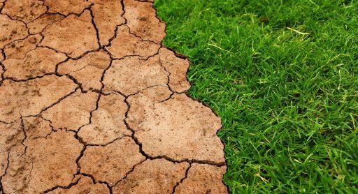 Le réchauffement climatique pourrait atteindre la limite de 1,5°C d'ici… 5 ans