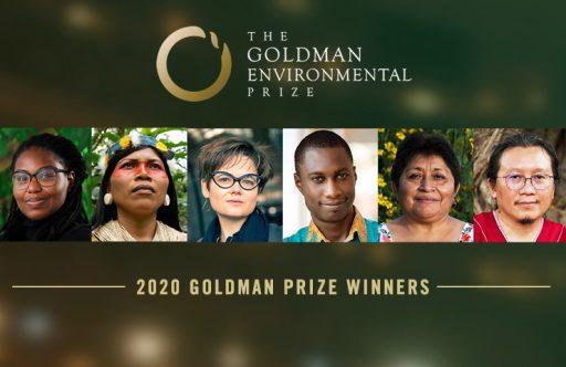 Portraits: les 6 lauréats du 'Prix Nobel de l'écologie' 2020