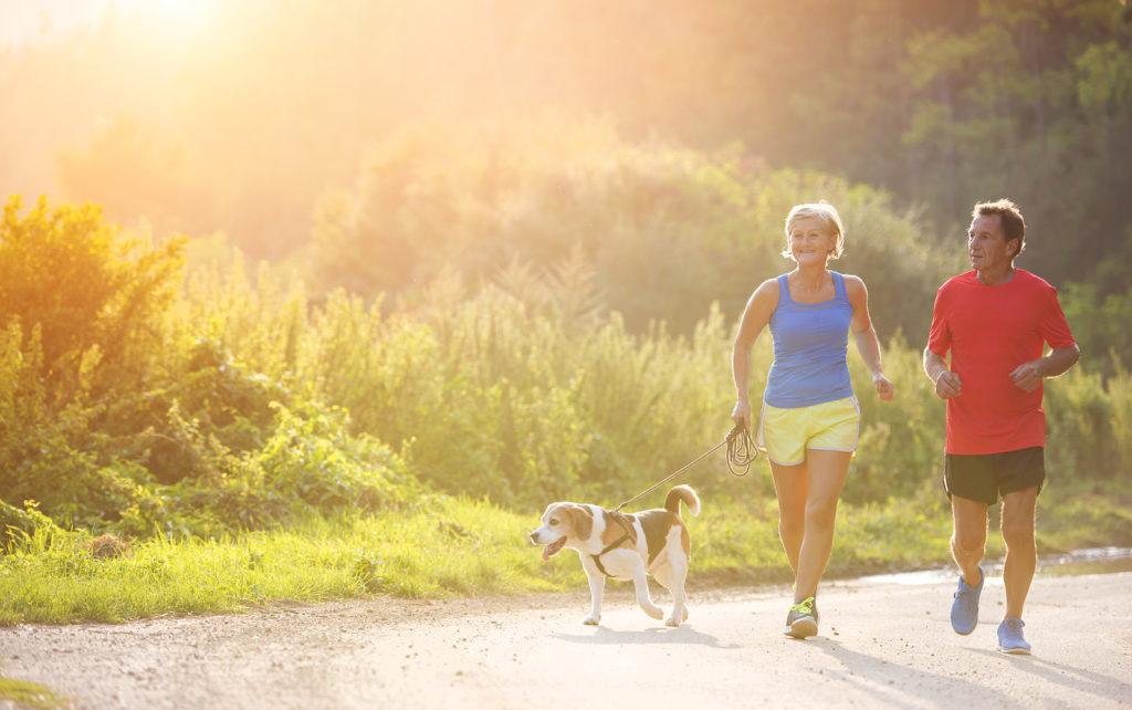 Hoe houd je in de zomer je cholesterol onder controle?