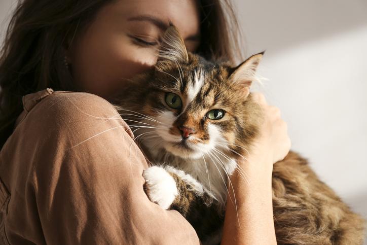 Moeten we binnenkort ook onze huisdieren vaccineren? Wetenschappers zeggen van wel!