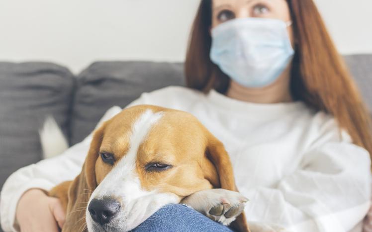 Nieuwe Covid-studie toont aan waarom sommige geïnfecteerde mensen hun reukzin verliezen