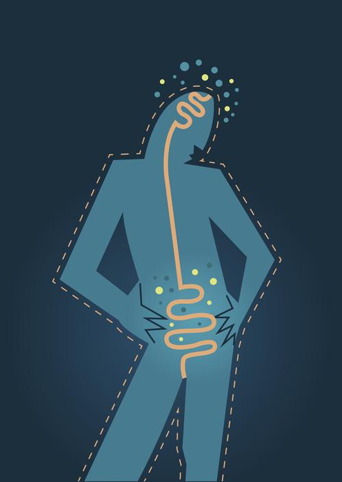Je darmen in topvorm houden? De voedingsdeskundige en osteopaat legt uit hoe je dat doet!