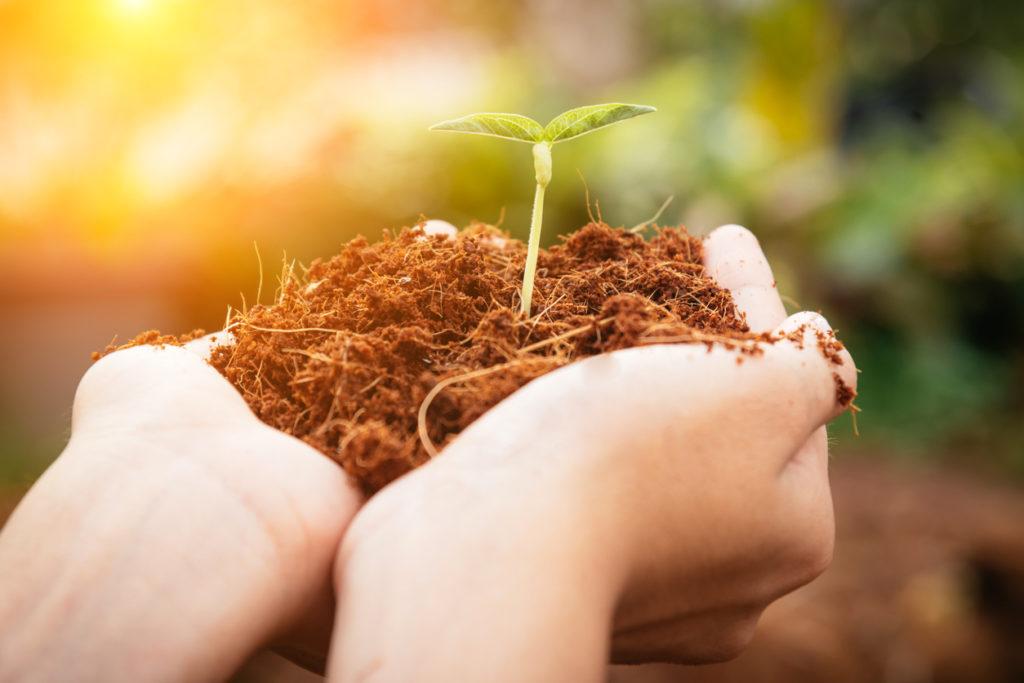 10 haalbare tips om zelf een steentje bij te dragen voor het klimaat
