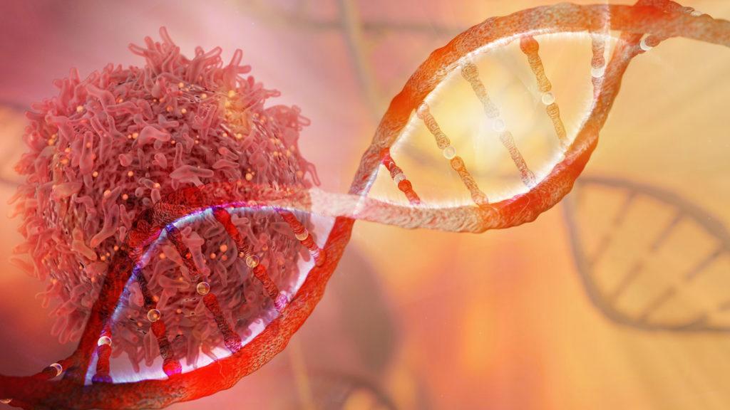 CAR-T-therapie: mogelijke doorbraak in de strijd tegen kanker
