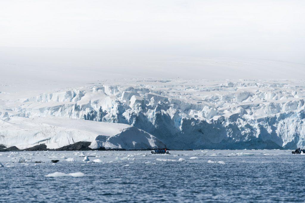 Des scientifiques découvrent des créatures dans les profondeurs de l'Antarctique : 'Elles ne devraient pas être là' - newsmonkey FR