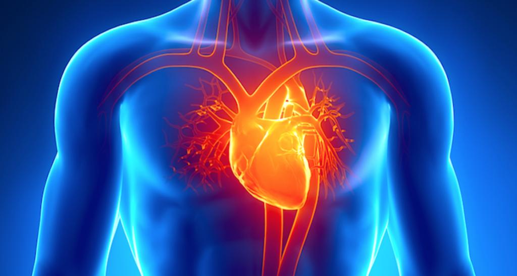 Levensverwachting bij hartfalen en nierfalen