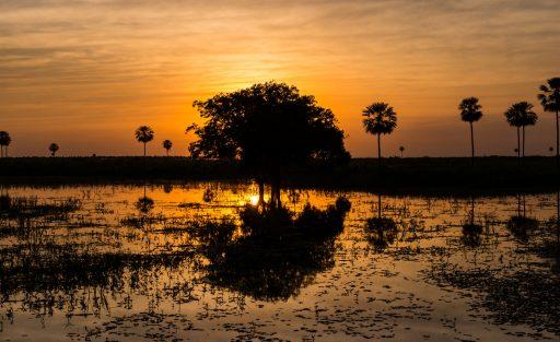 Onvergetelijk vergeten Paraguay: op ontdekking in het échte Zuid-Amerika