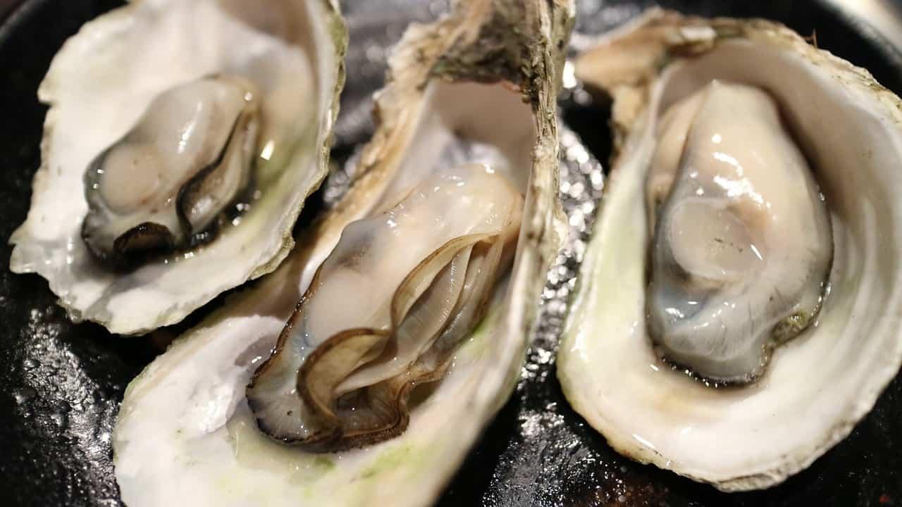 Trois huîtres ouvertes