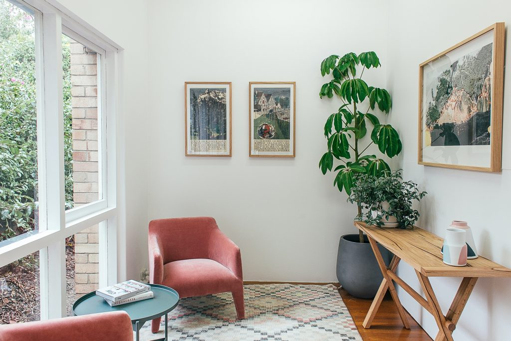 Betere luchtkwaliteit met luchtzuiverende kamerplanten