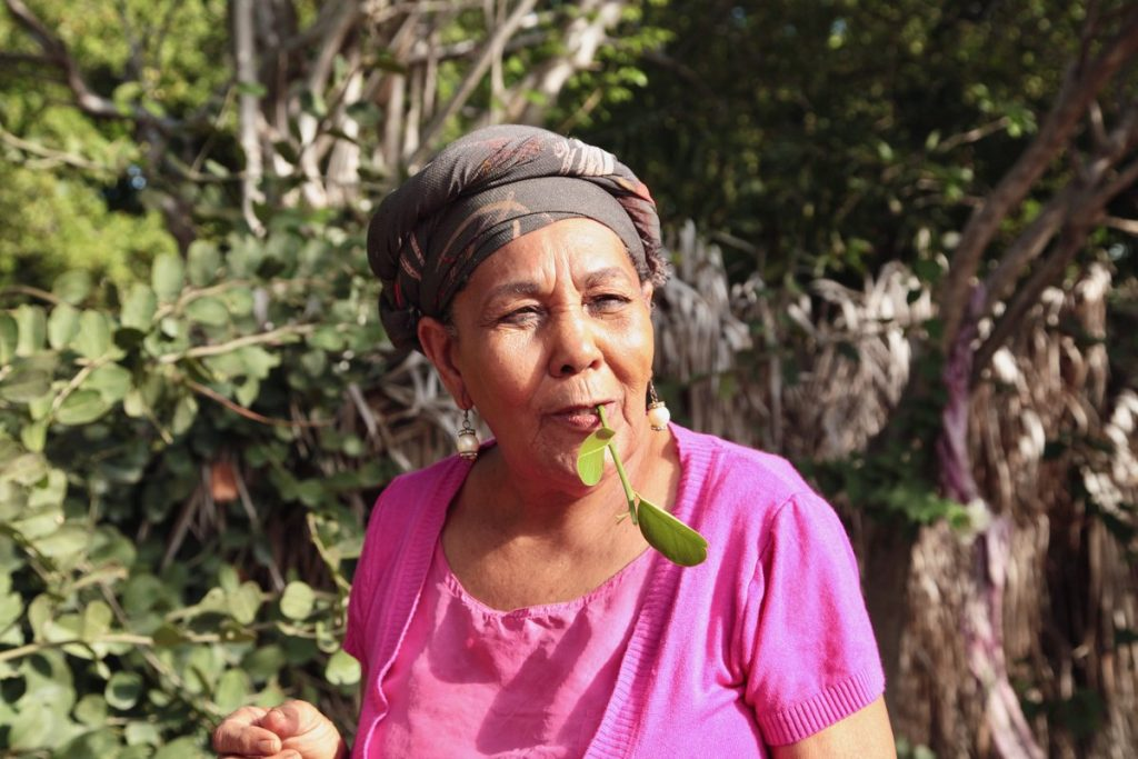 Curaçao - Dinah Veeris kruidentuin