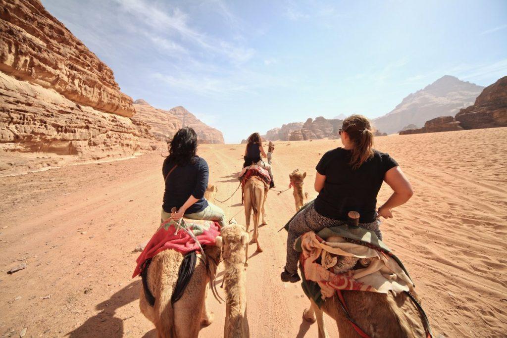 Jordanië - Wadi Rum kamelen