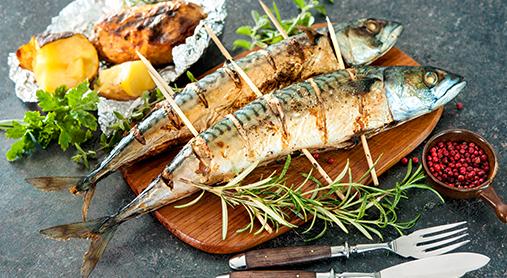 Le maquereau : le poisson le plus nutritif ?